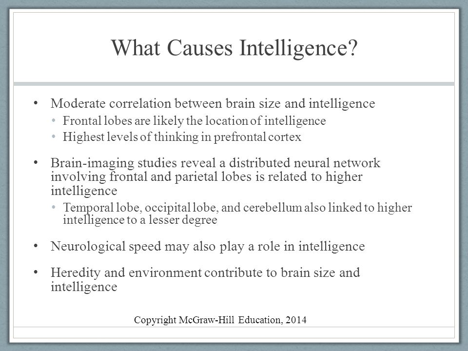 What Causes Intelligence