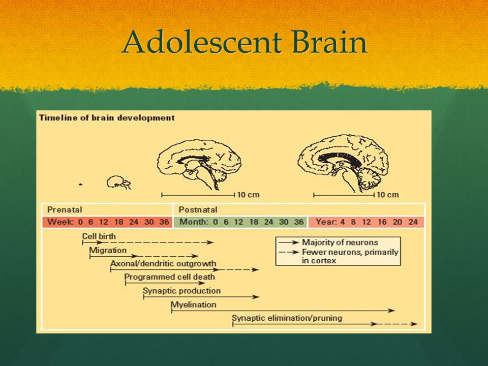 an examination of metacognitive awareness among adolescents and adults Domain-specific enhancement of metacognitive ability following meditation training benjamin baird, michael d mrazek, dawa t phillips, and jonathan w schooler.