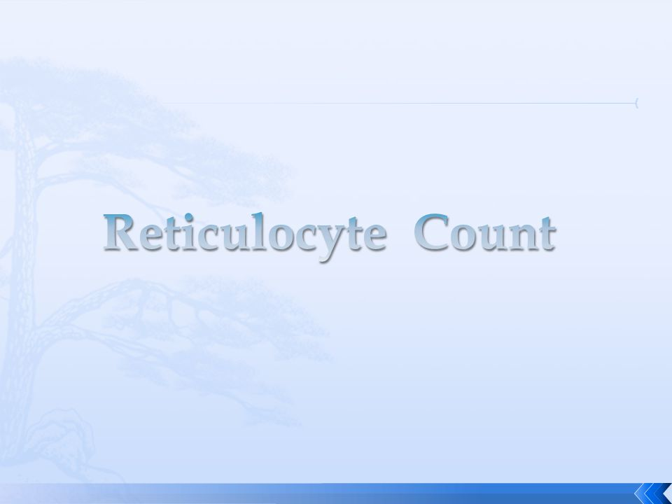 Reticulocyte Count