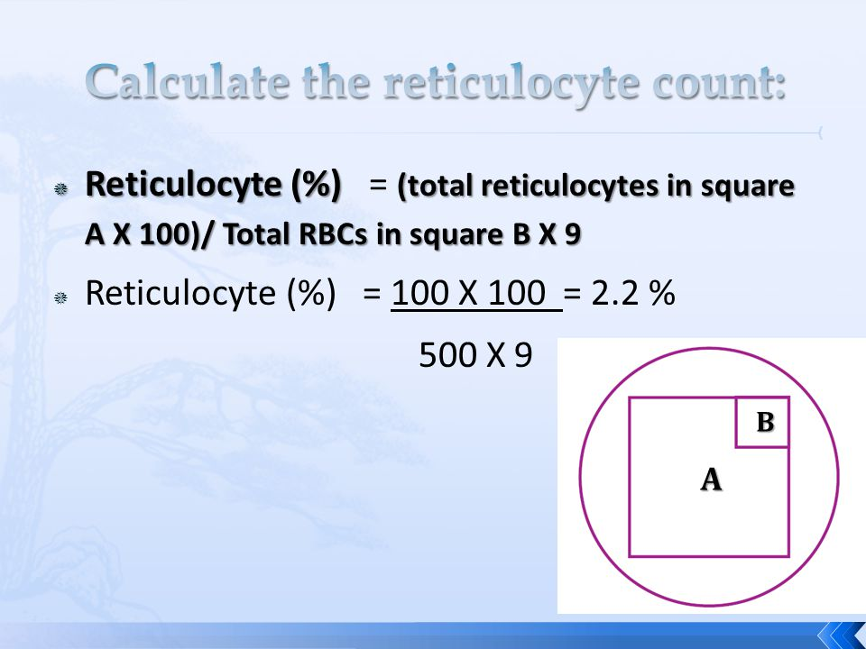Calculate the reticulocyte count: