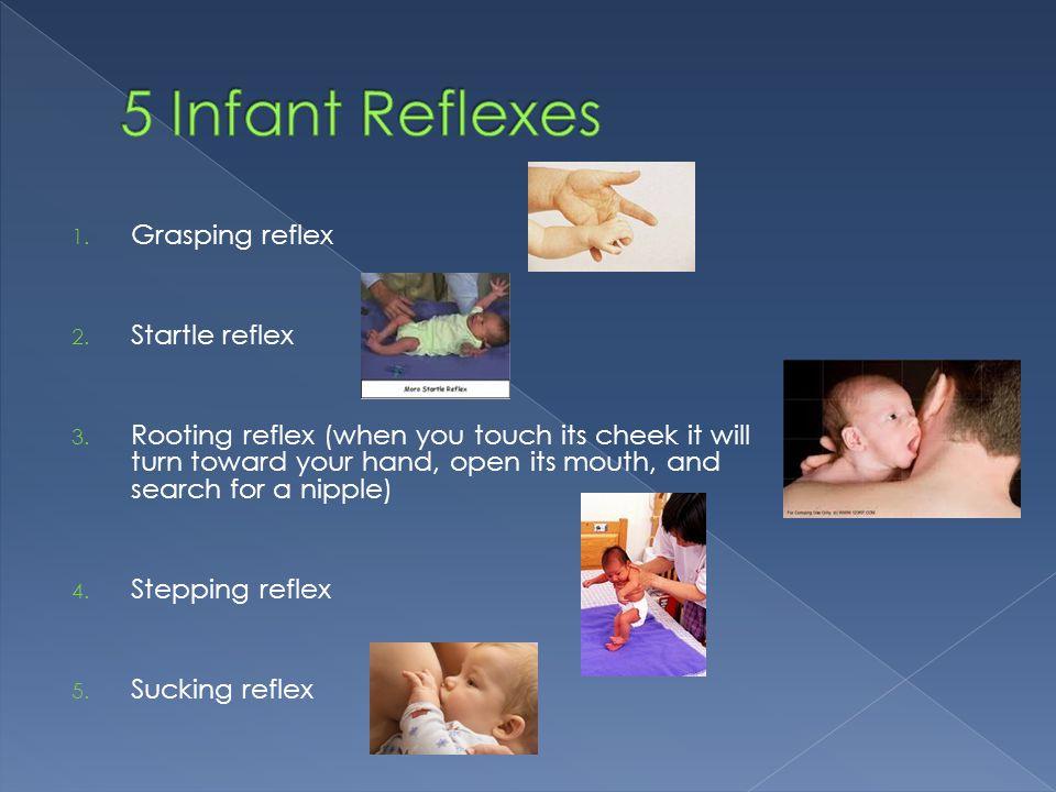 5 Infant Reflexes Grasping reflex Startle reflex