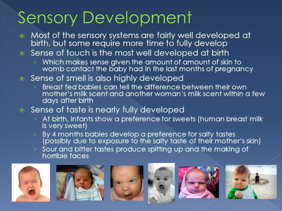 Sensory Development Most of the sensory systems are fairly well developed at birth, but some require more time to fully develop.
