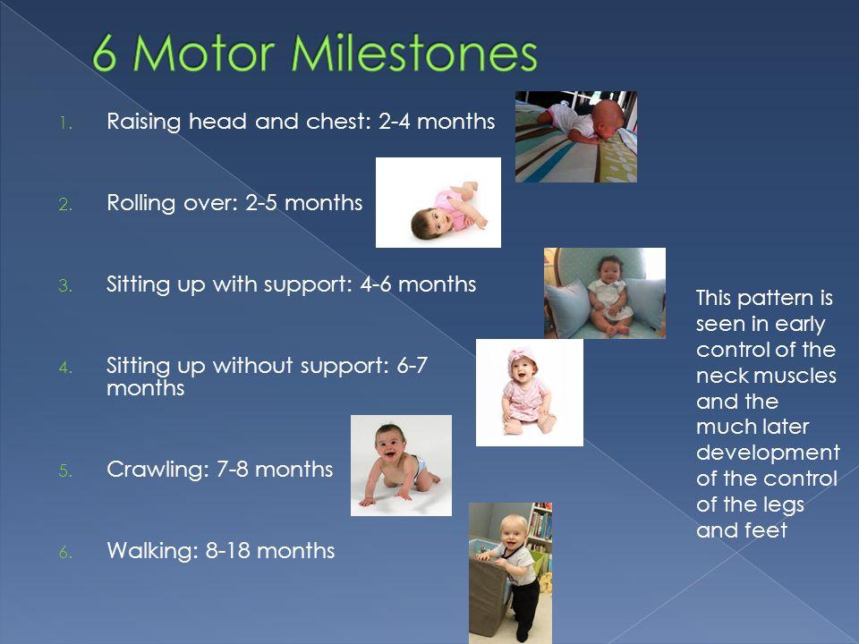 6 Motor Milestones Raising head and chest: 2-4 months