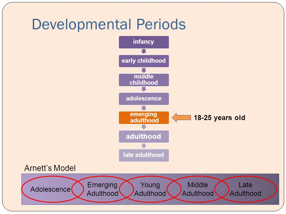 Developmental Periods