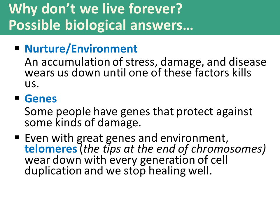 Why don't we live forever Possible biological answers…