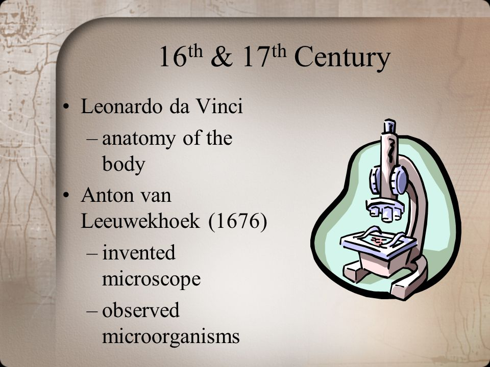16th & 17th Century Leonardo da Vinci anatomy of the body