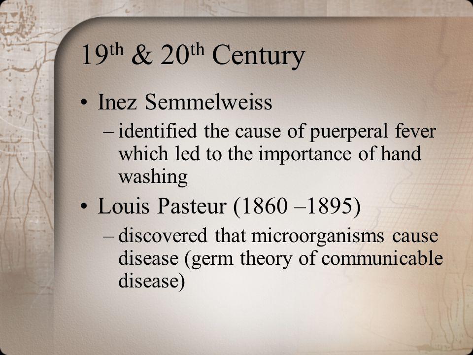 19th & 20th Century Inez Semmelweiss Louis Pasteur (1860 –1895)