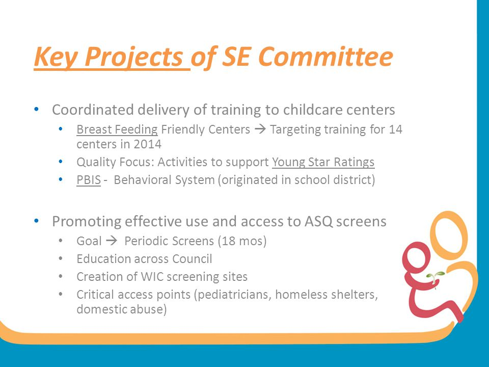 Key Projects of SE Committee
