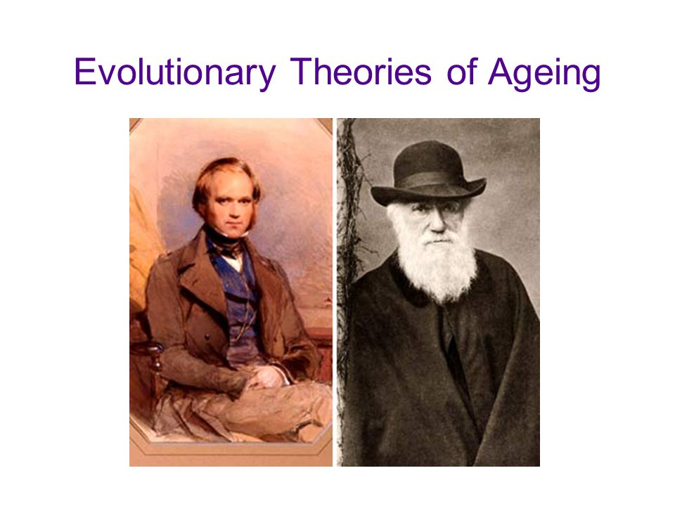 Evolutionary Theories of Ageing