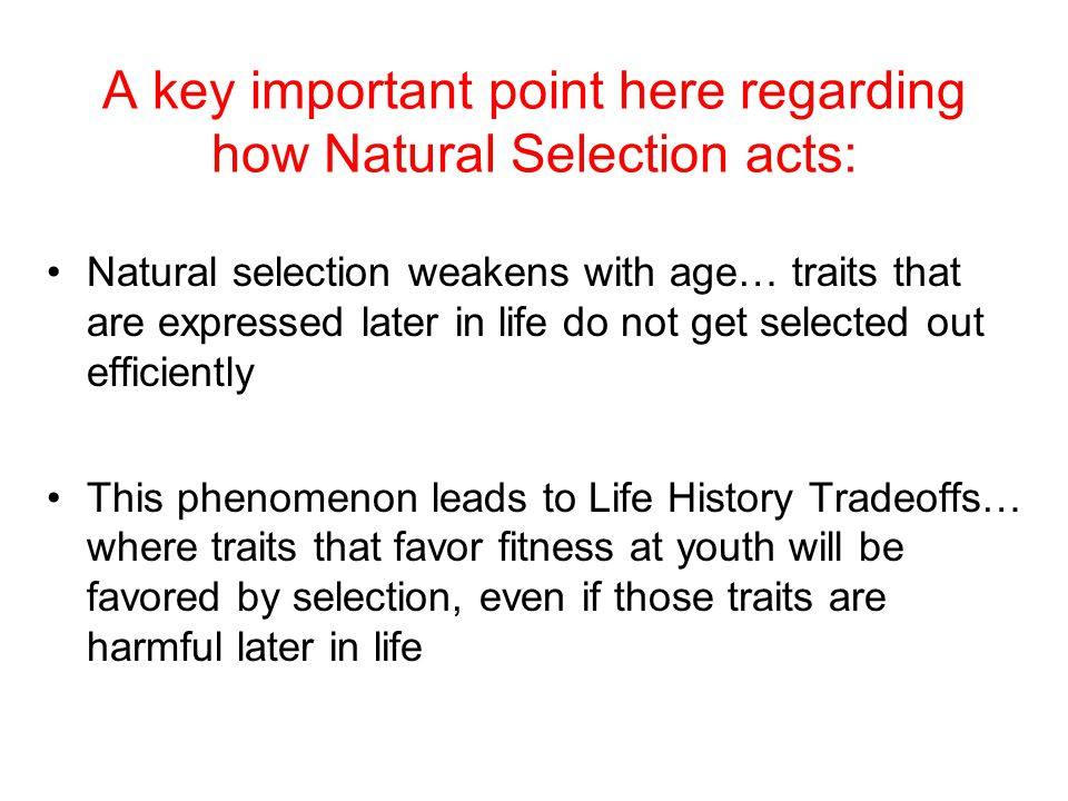 Constraints on Natural Selection Evolutionary Tradeoffs ...