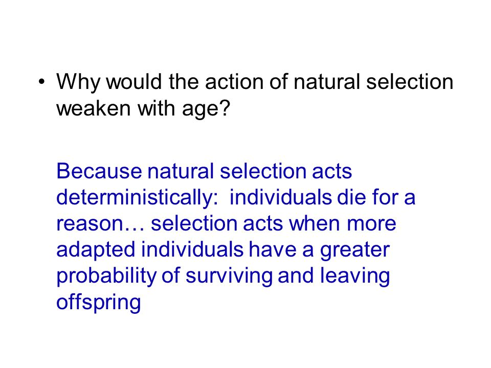 Why would the action of natural selection weaken with age