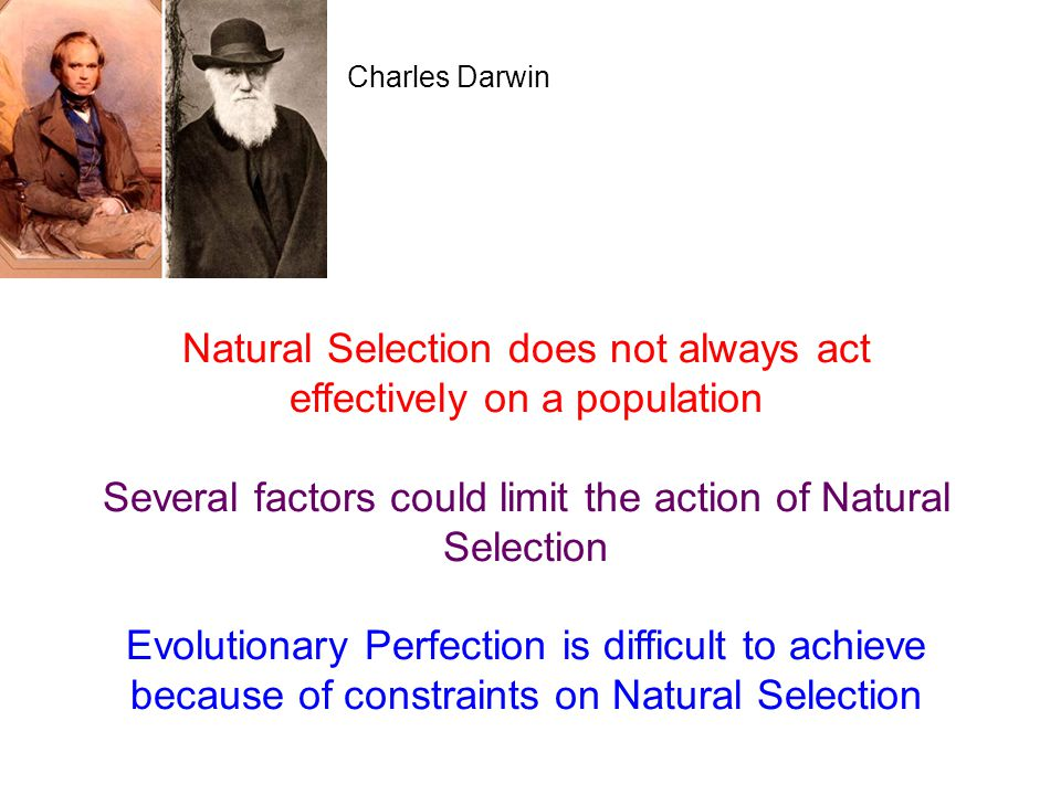 Natural Selection does not always act effectively on a population
