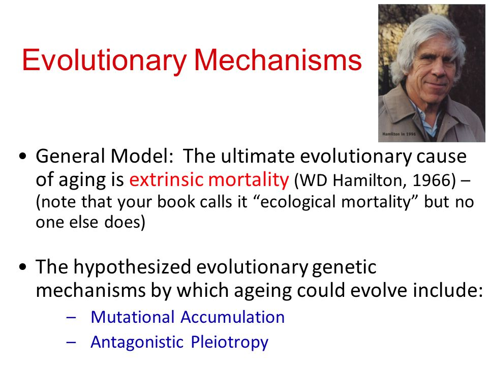 Evolutionary Mechanisms