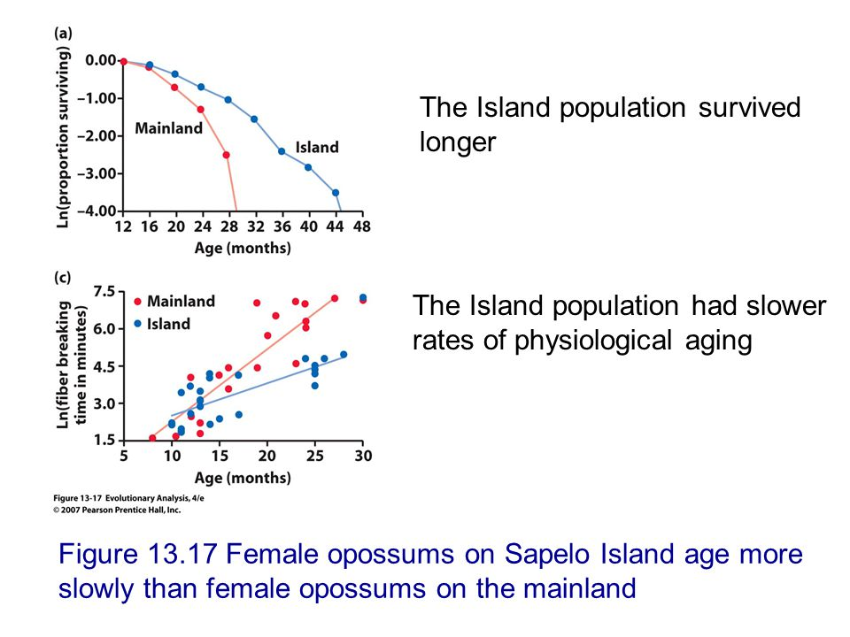 The Island population survived longer