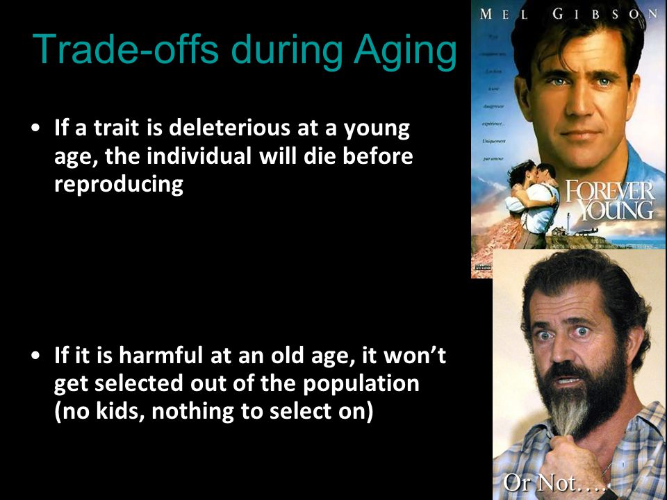 Trade-offs during Aging