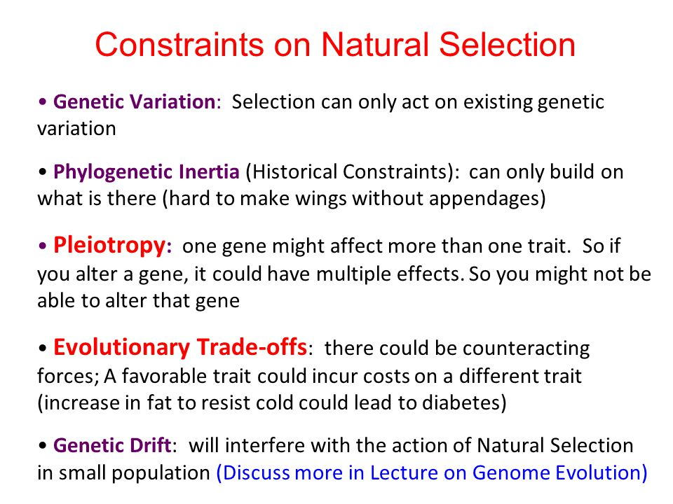 Constraints on Natural Selection