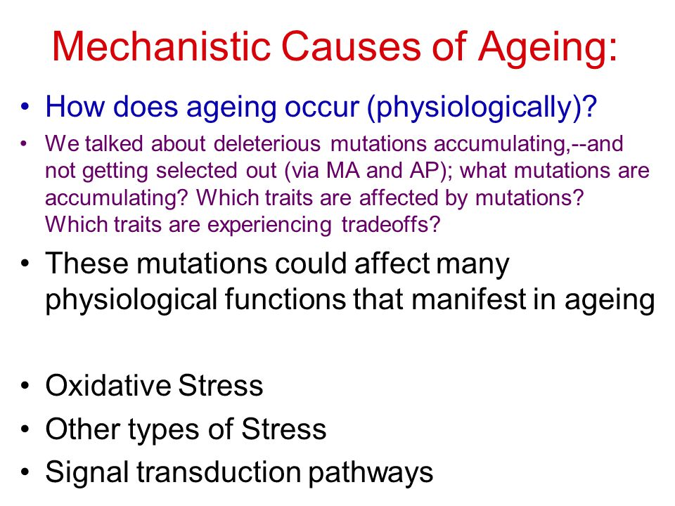 Mechanistic Causes of Ageing: