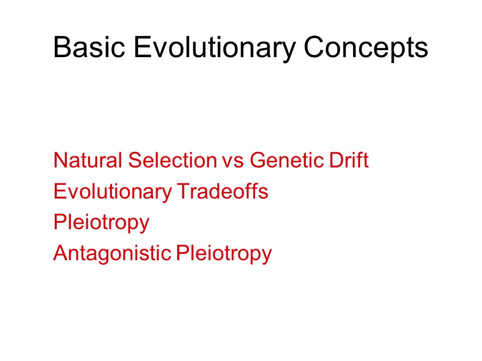 Basic Evolutionary Concepts