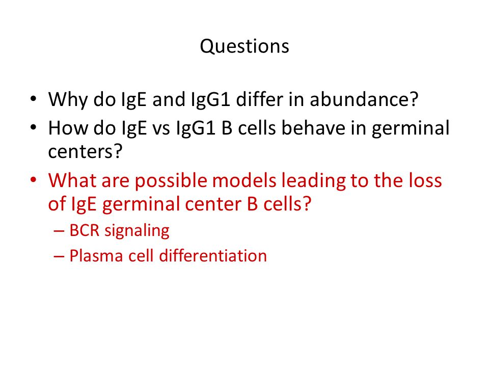 Why do IgE and IgG1 differ in abundance
