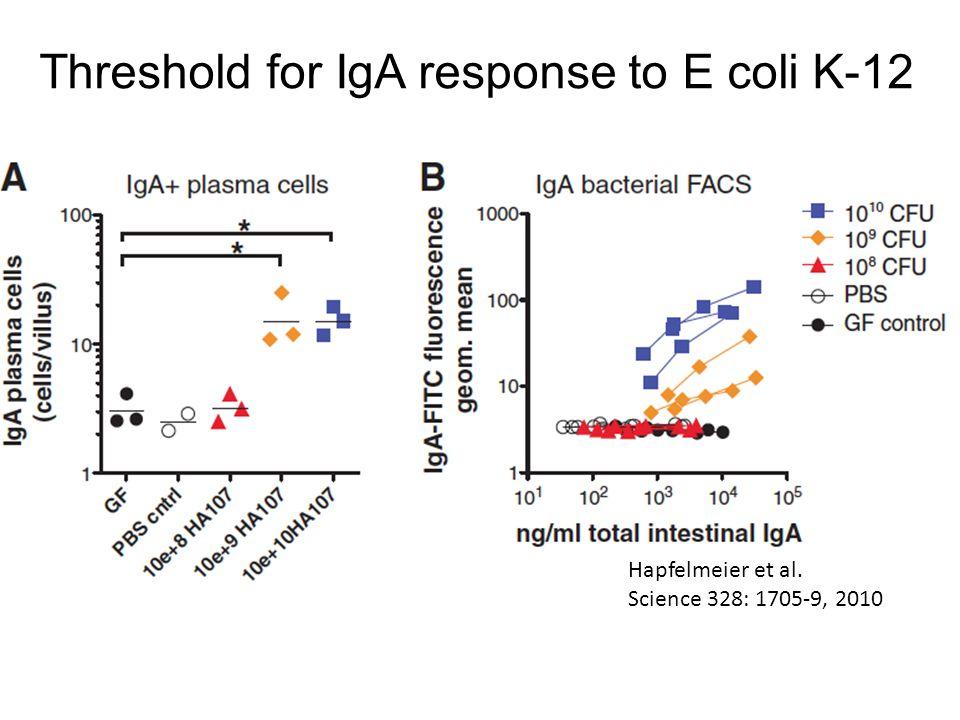 Threshold for IgA response to E coli K-12