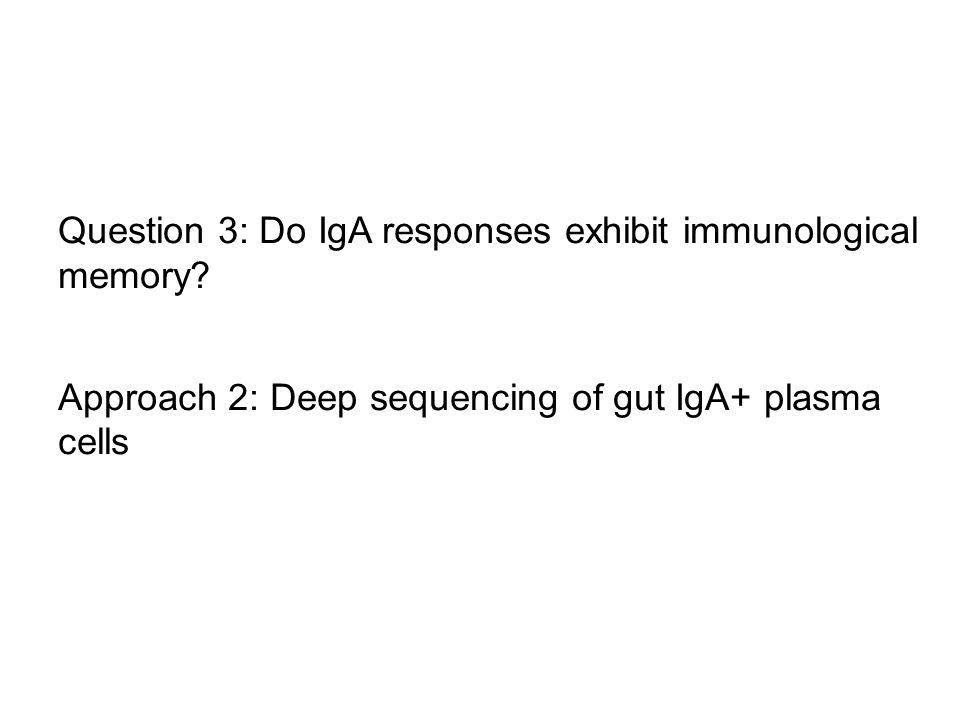 Question 3: Do IgA responses exhibit immunological memory