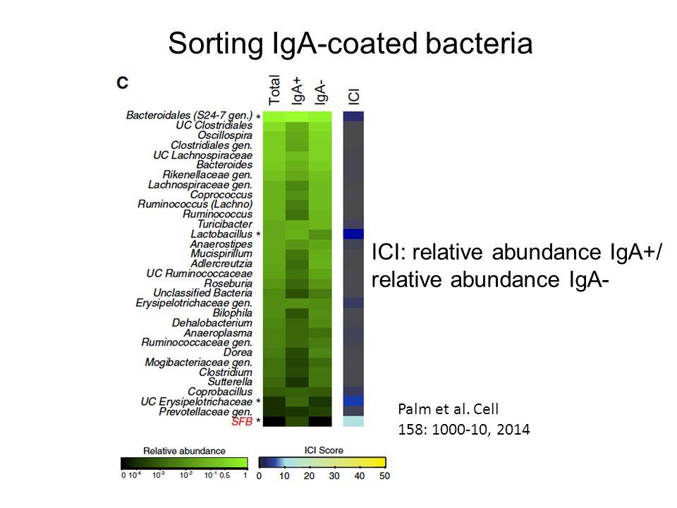 Sorting IgA-coated bacteria