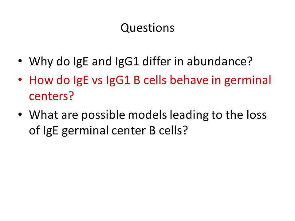 Questions Why do IgE and IgG1 differ in abundance How do IgE vs IgG1 B cells behave in germinal centers