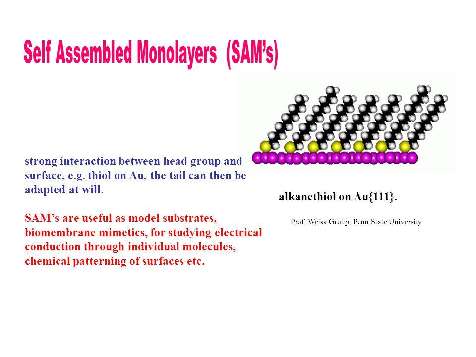 Self Assembled Monolayers (SAM's)