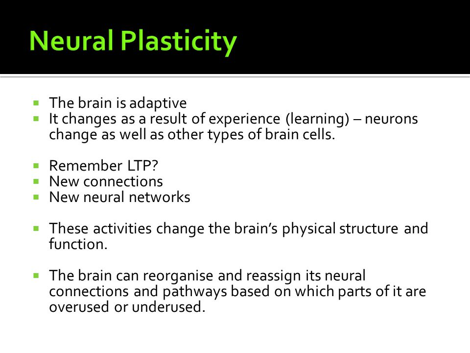 Neural Plasticity The brain is adaptive