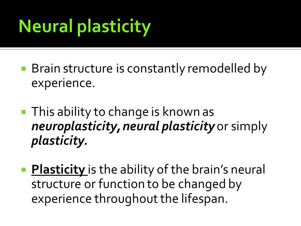 Neural plasticity Brain structure is constantly remodelled by experience.