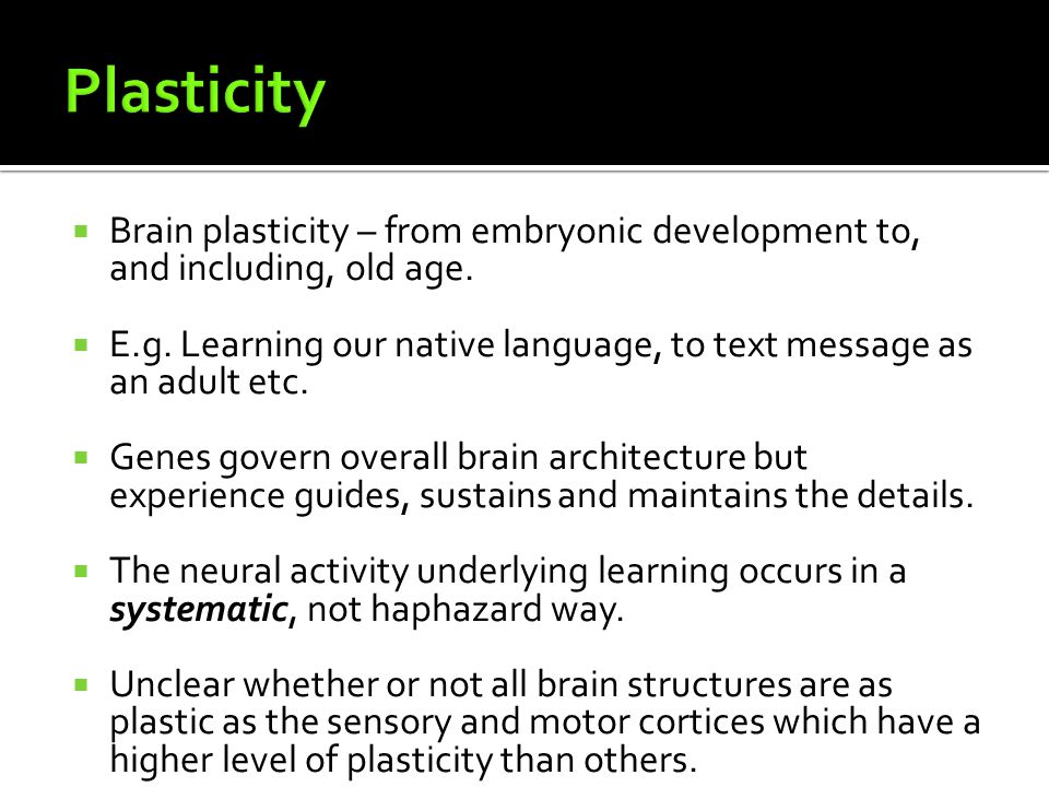 Plasticity Brain plasticity – from embryonic development to, and including, old age.