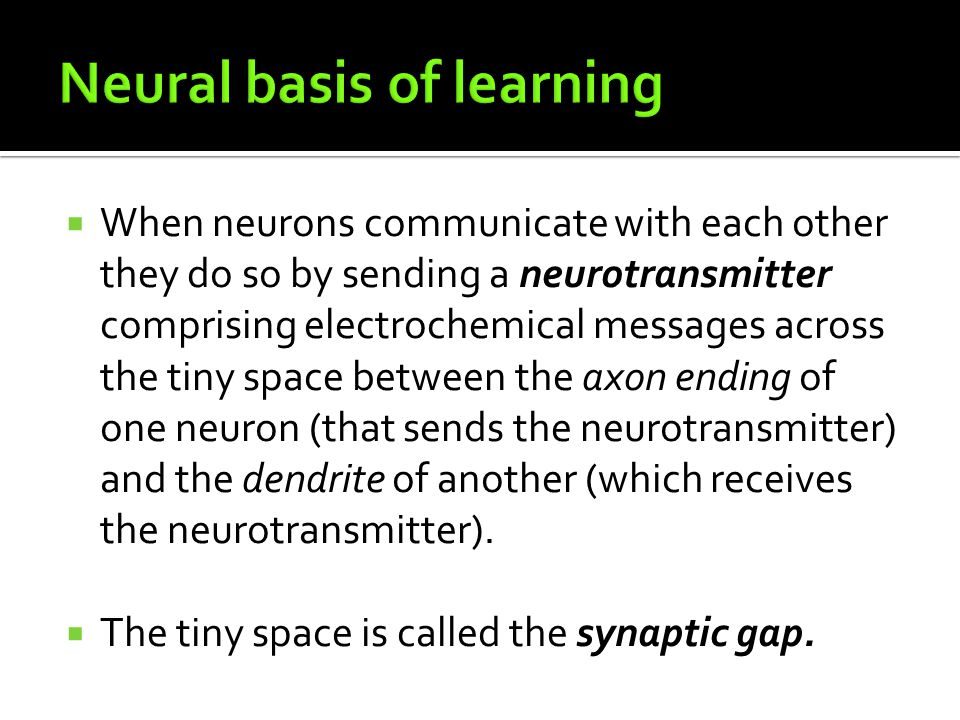 Neural basis of learning