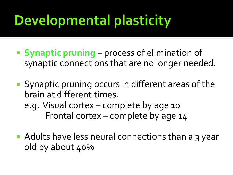 Developmental plasticity
