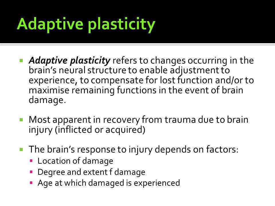 Adaptive plasticity