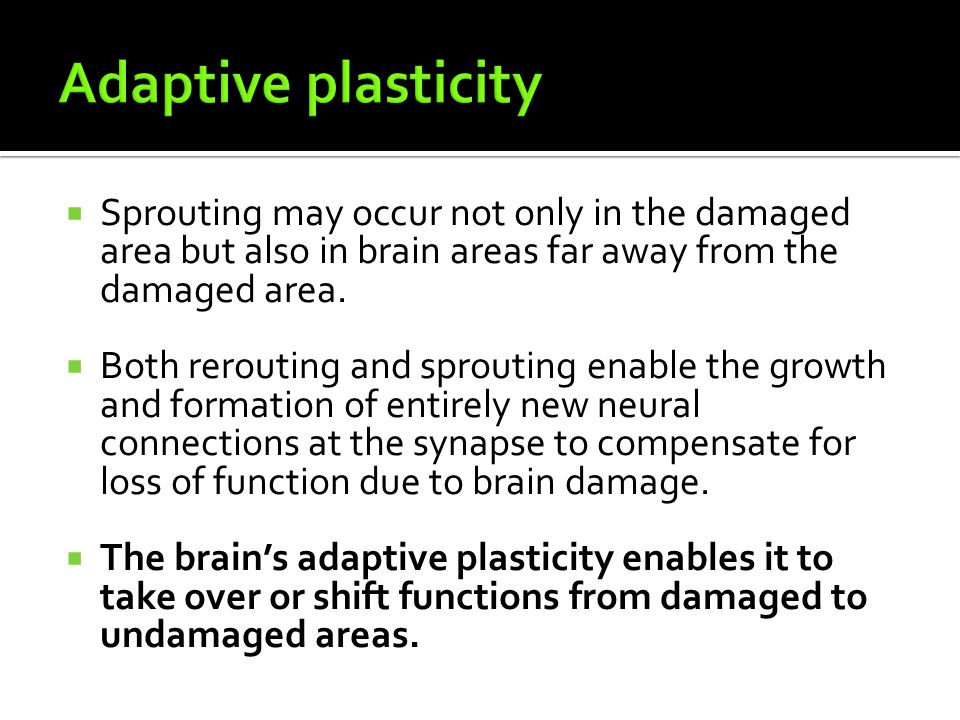 Adaptive plasticity Sprouting may occur not only in the damaged area but also in brain areas far away from the damaged area.