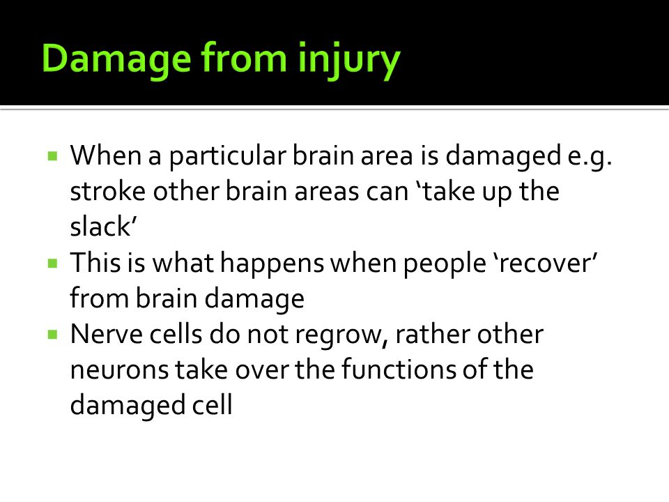 Damage from injury When a particular brain area is damaged e.g. stroke other brain areas can 'take up the slack'