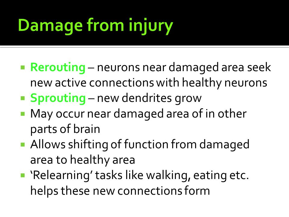 Damage from injury Rerouting – neurons near damaged area seek new active connections with healthy neurons.