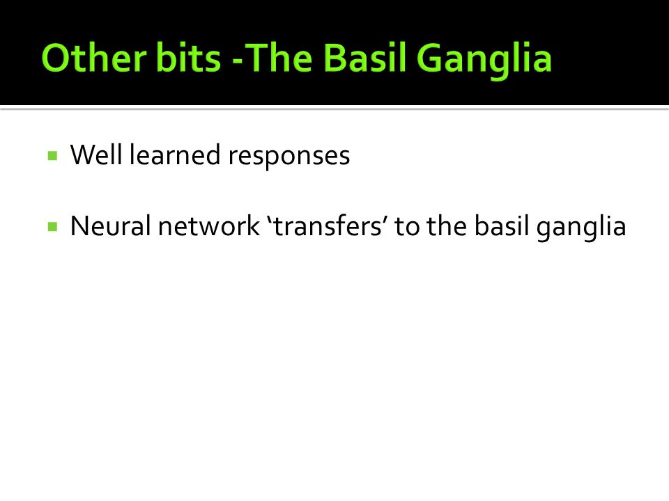 Other bits -The Basil Ganglia