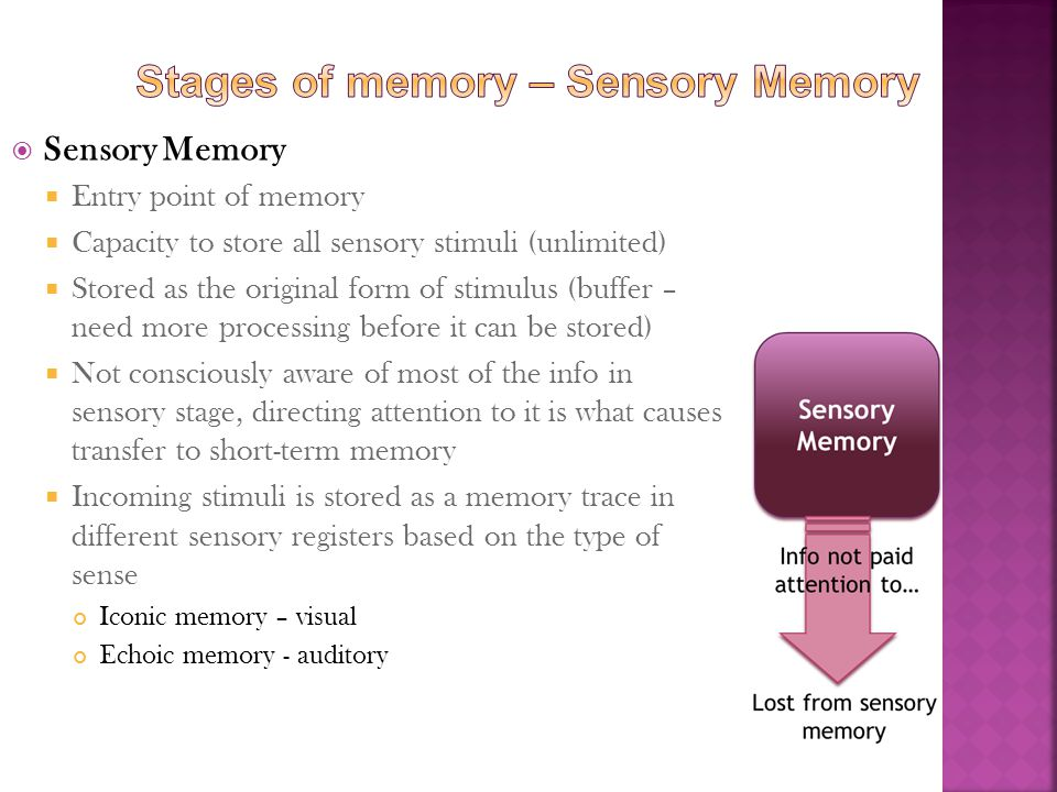 Stages of memory – Sensory Memory