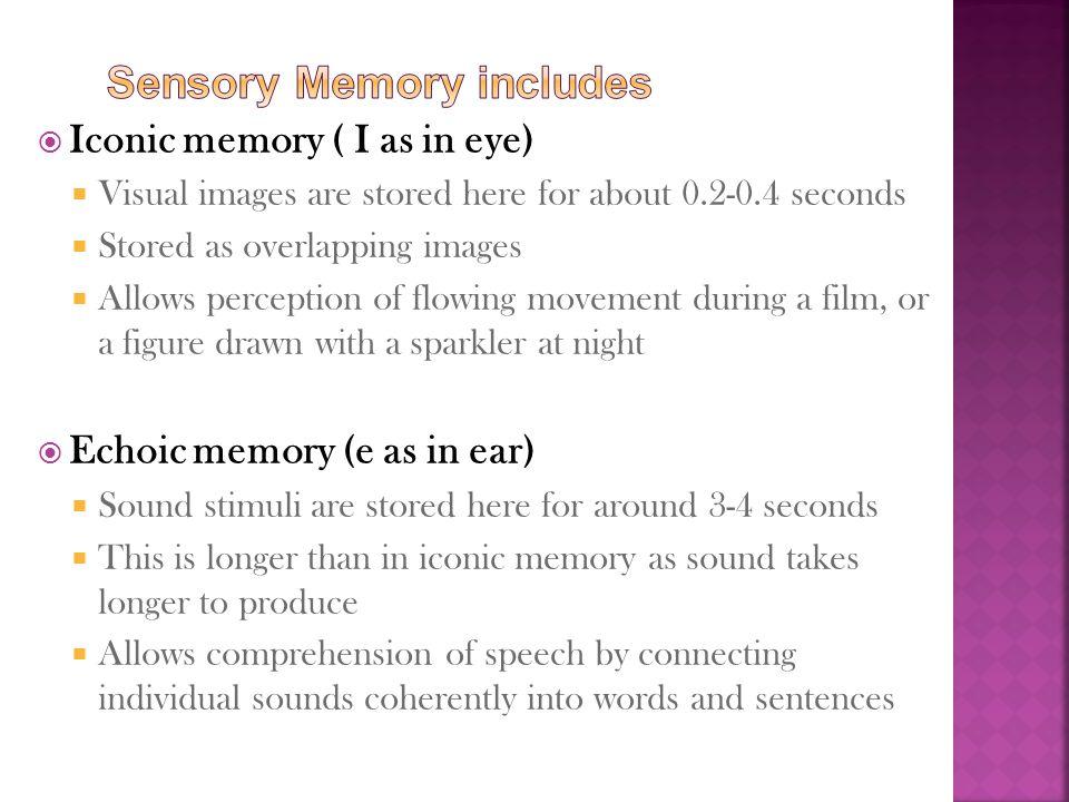Sensory Memory includes