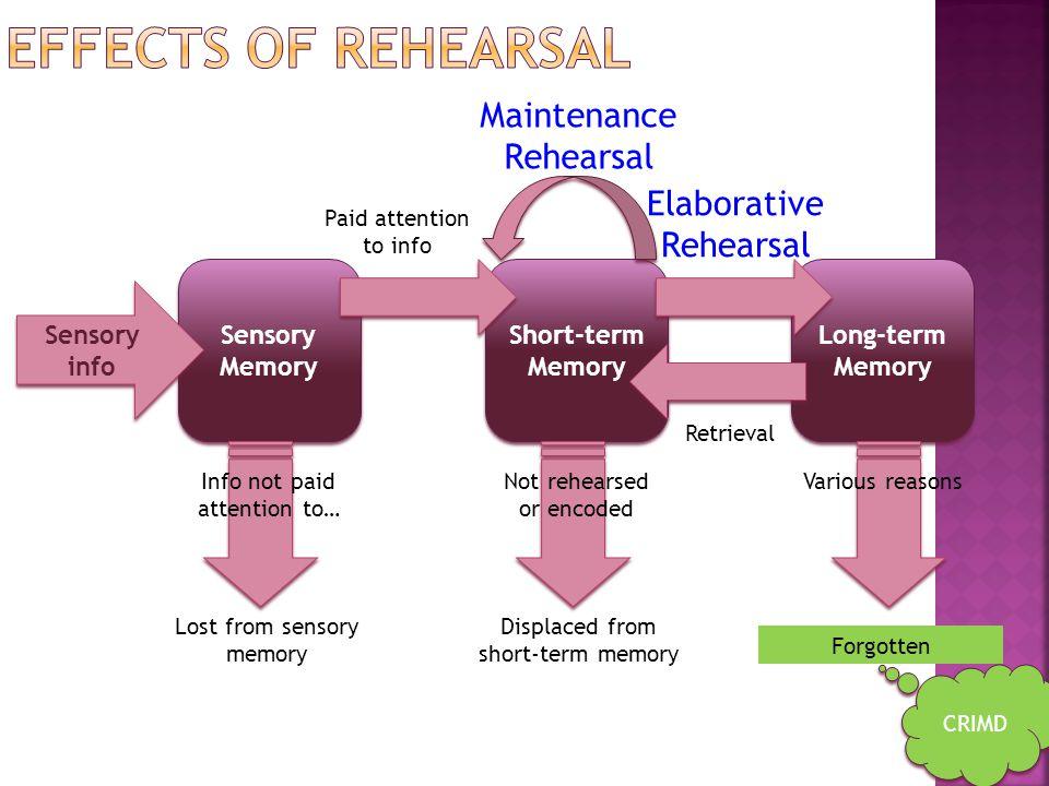 Effects of rehearsal Maintenance Rehearsal Elaborative Rehearsal
