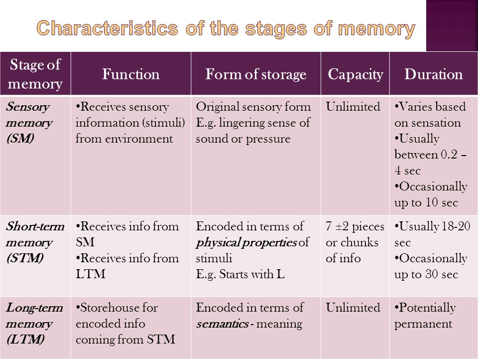 Characteristics of the stages of memory