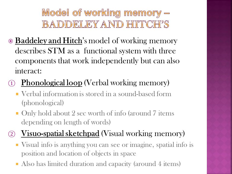 Model of working memory – Baddeley and Hitch's