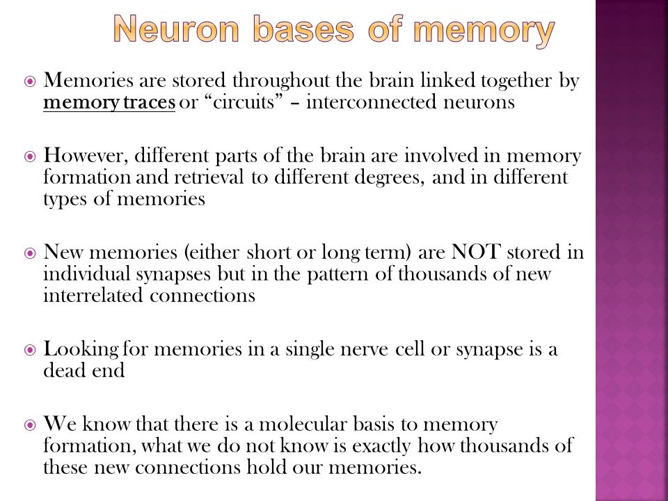 Neuron bases of memory Memories are stored throughout the brain linked together by memory traces or circuits – interconnected neurons.