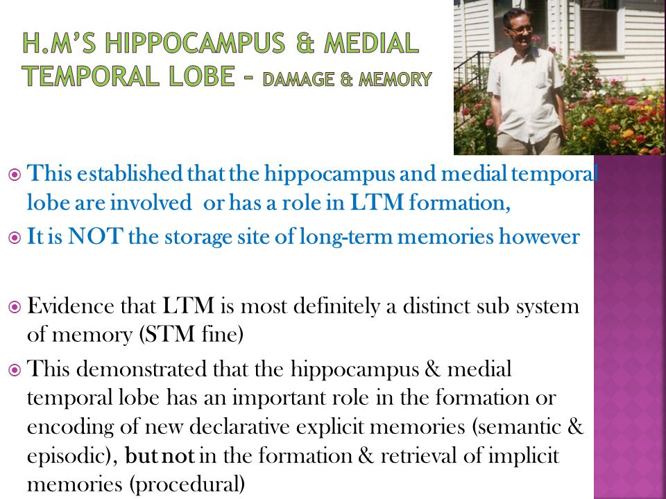 H.M's Hippocampus & Medial Temporal Lobe – damage & memory