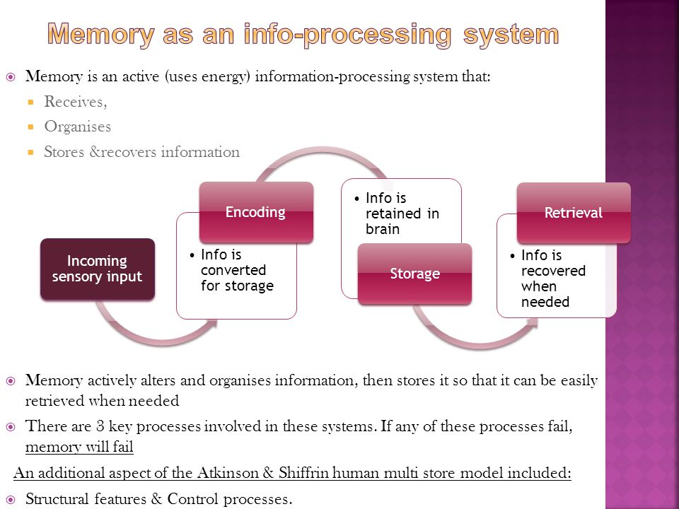 Memory as an info-processing system