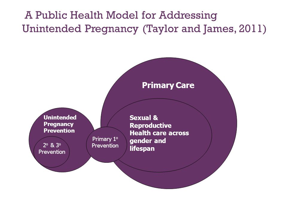 A Public Health Model for Addressing Unintended Pregnancy (Taylor and James, 2011)
