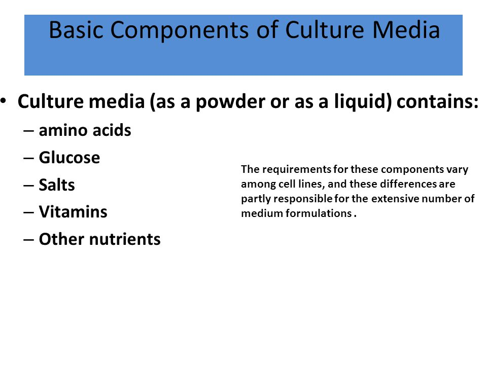 Basic Components of Culture Media