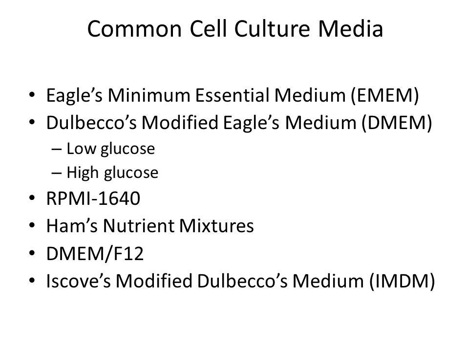 Common Cell Culture Media