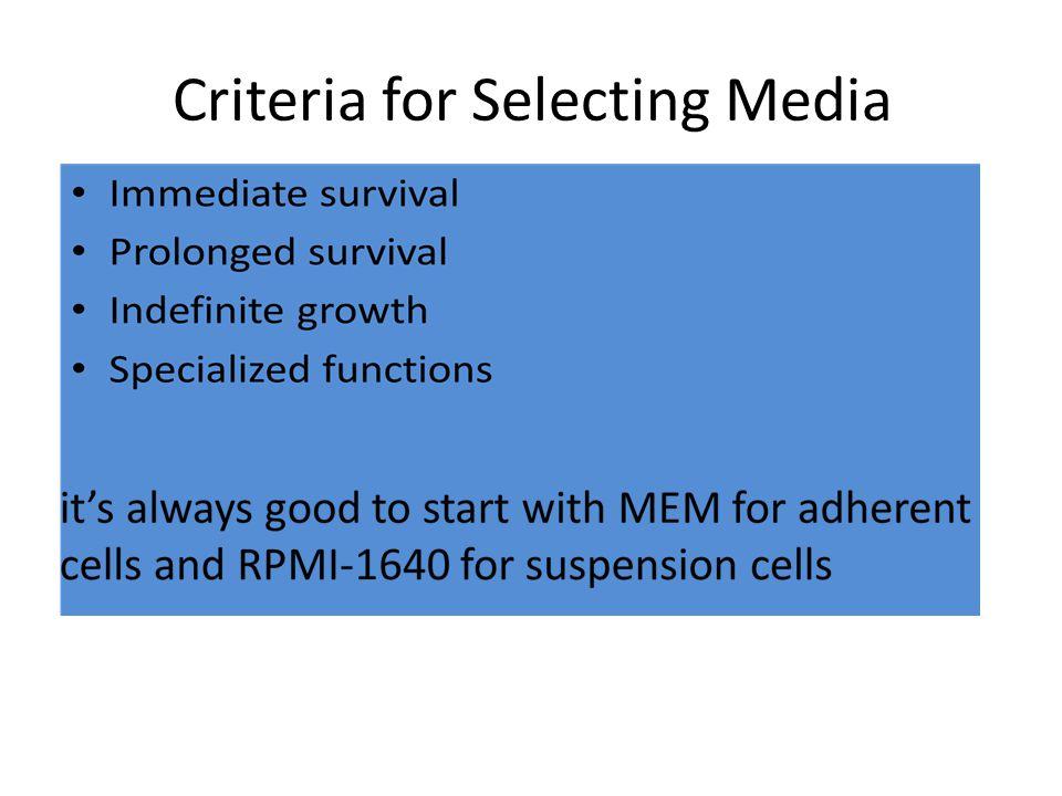 Criteria for Selecting Media